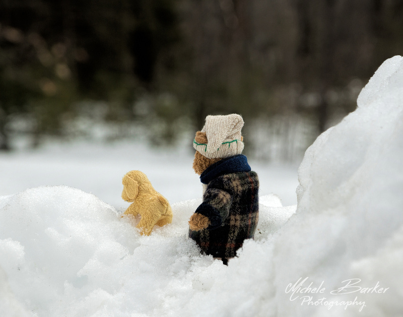 """The adventures of """"Just a Bear and his Dog"""""""